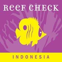 Reef Check legend diving lembongan