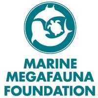 Marine Megafauna Foundation in Lembongan