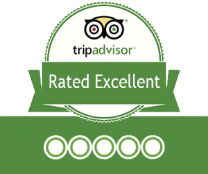 100 excellent reviews in Tripadvisor!