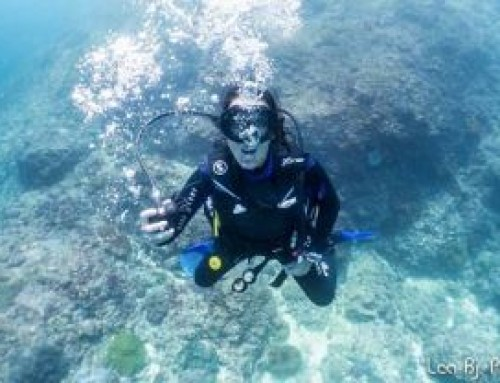 Portrait of Chantal: Divemaster trainee