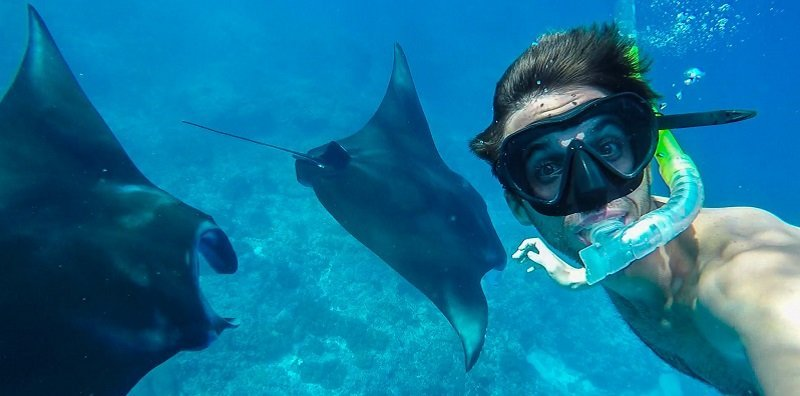 snorkeling manta ray legend diving lembongan
