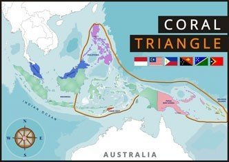 Coral triangle map