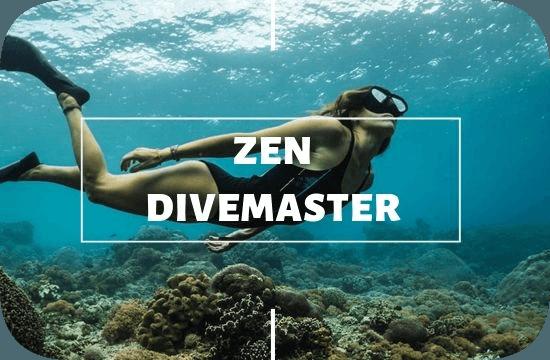 Divemaster Zen Internship Nusa Lembongan