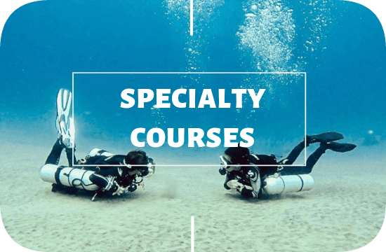 PADI specialties courses with Legend Diving Lembongan