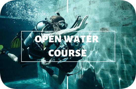 PADI open water course at legend diving lembongan