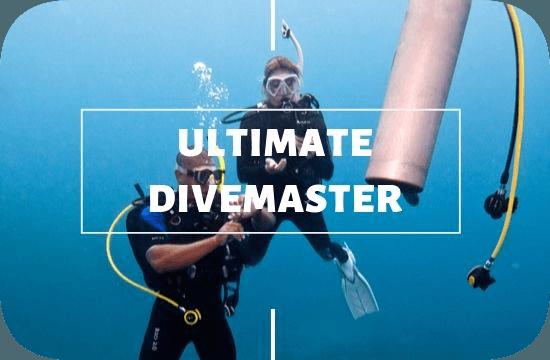 Divemaster Ultimate Internship Nusa Lembongan