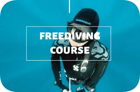 Freediving course at Legend Diving